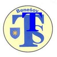 logo Technické služby Benešov,s r.o.